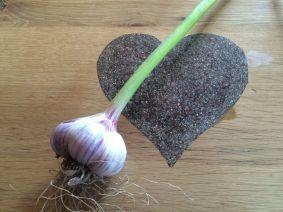garlic heart copy